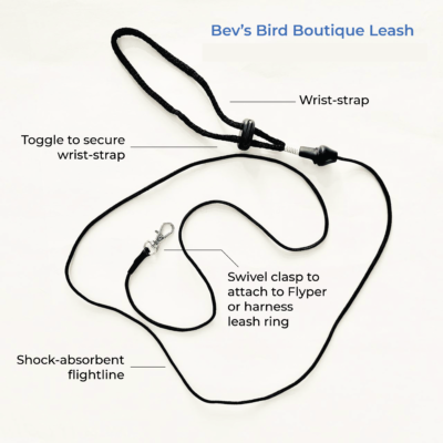 leash-02